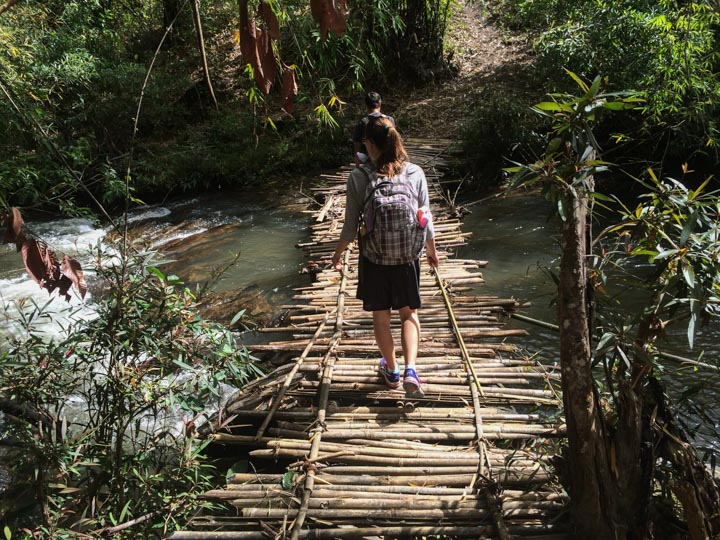 Jungle Trekking in Northern Thailand