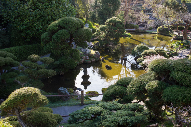 San Francisco Japanese Tea Garden